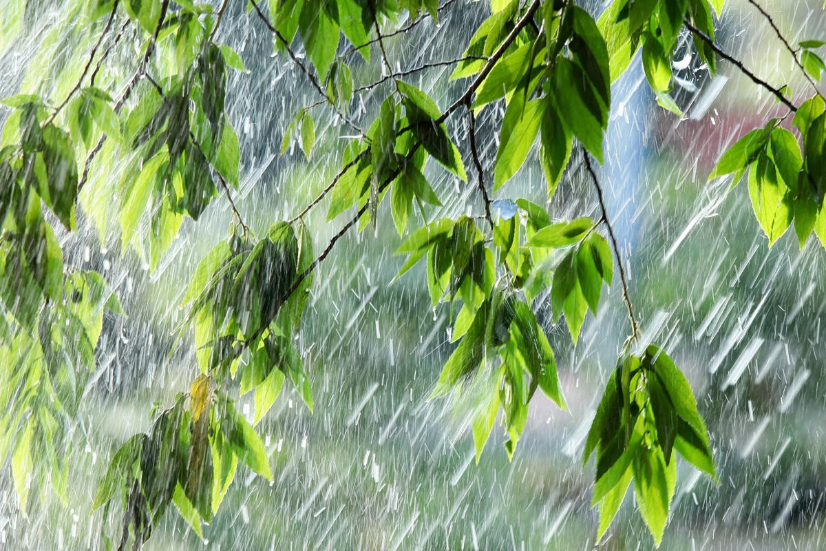 Прогноз погоды на 17 июня: на большей части страны пройдут дожди с грозами