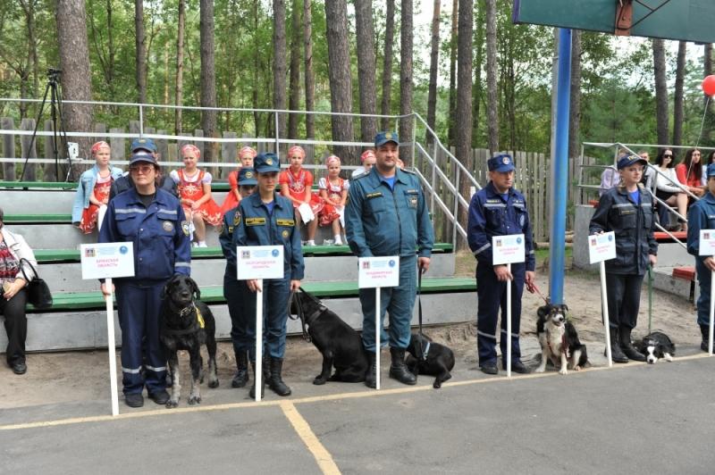 В Брянске 54 собаки со всего ЦФО выясняют, кто из них лучше помогает спасателям