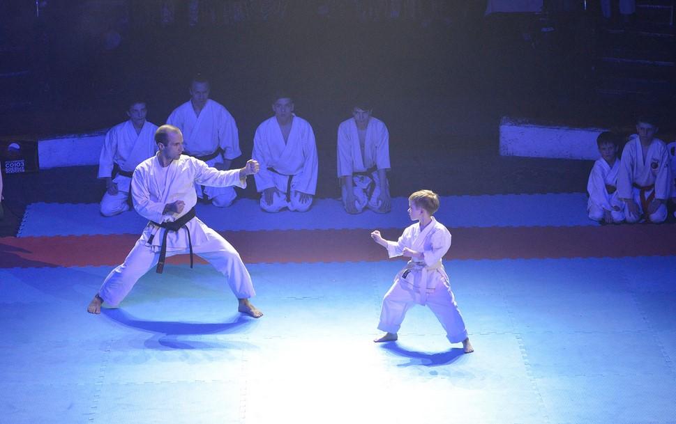 В Брянске прошел всероссийский фестиваль боевых искусств