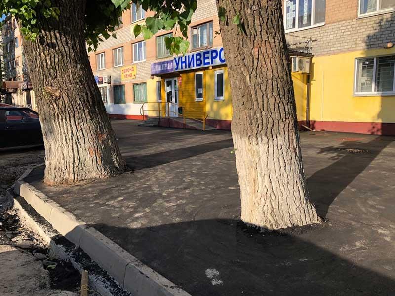 В Брянске изверги закатали деревья в асфальт