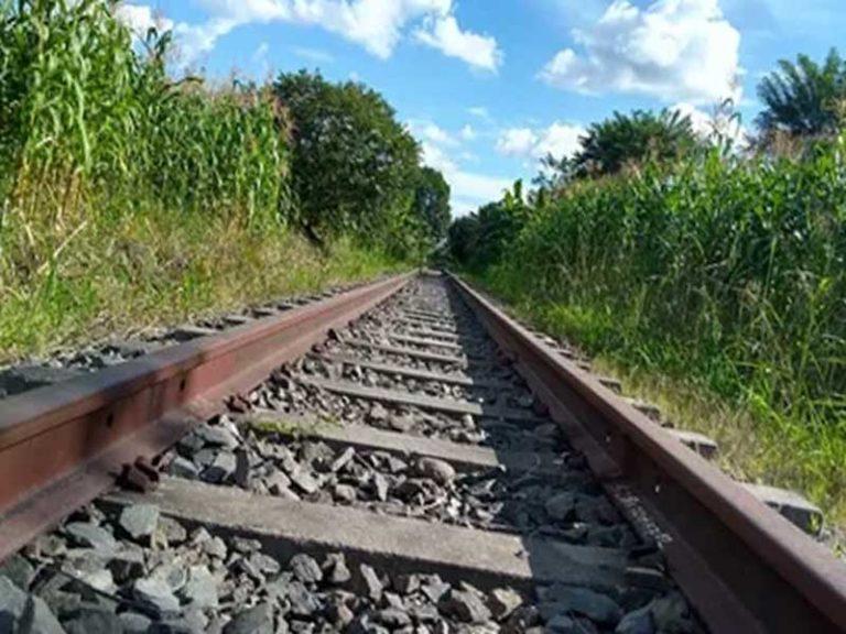 В Брянске два мужчины постепенно разбирали железную дорогу
