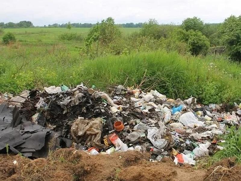 Навлинские родники превратили в свалку отходов