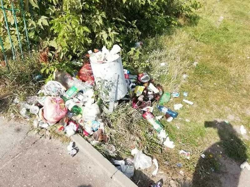 В Брянске похоронили под мусором детский городок «Катюша»
