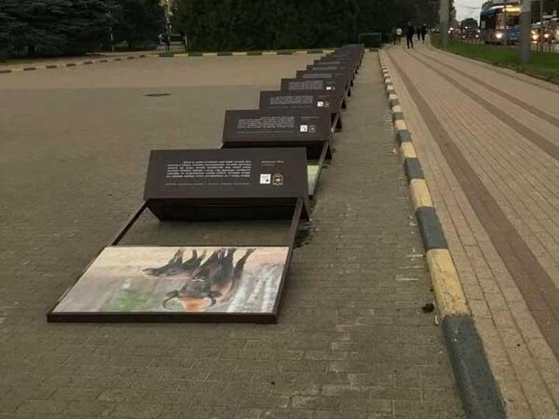 В Брянске ураган повалил зубров на площади Партизан