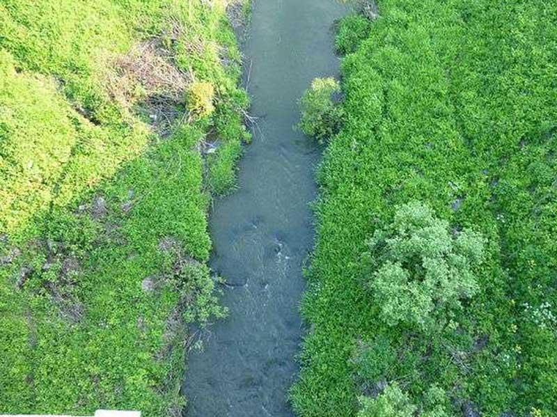 река сеща
