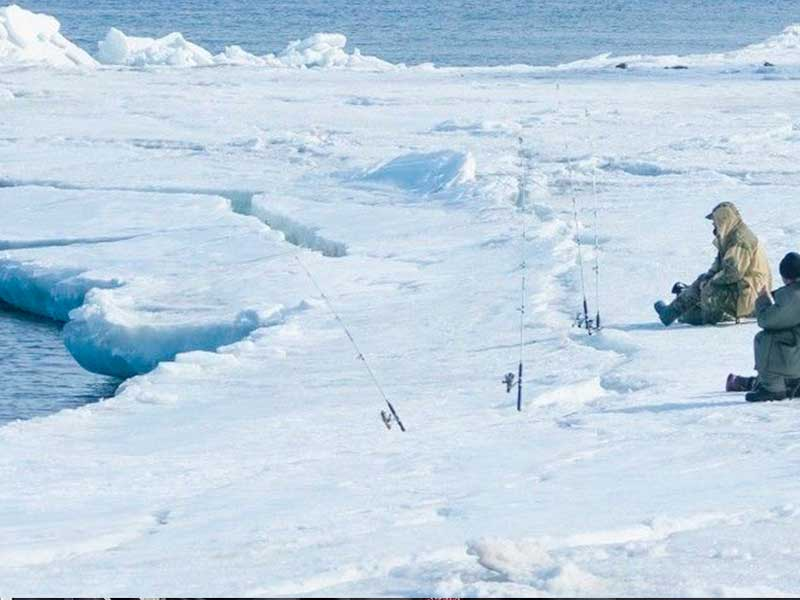 В Охотском море на льдине застряло 8 человек