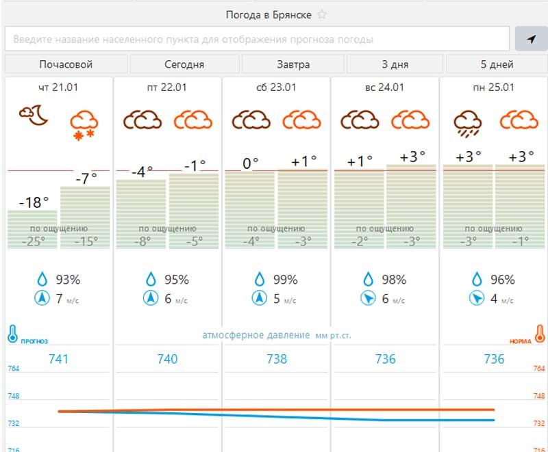 Прогнозируют в январе аномальное тепло в Брянской области