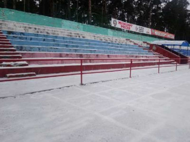 В Брянской области в Сельцо отремонтируют стадион