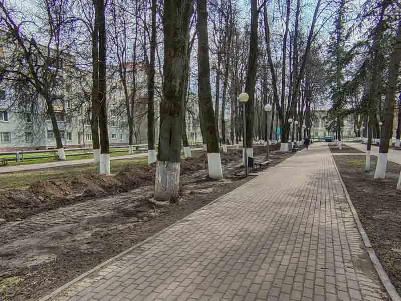 В Брянске приступили к реконструкции сквера «Энергетиков»