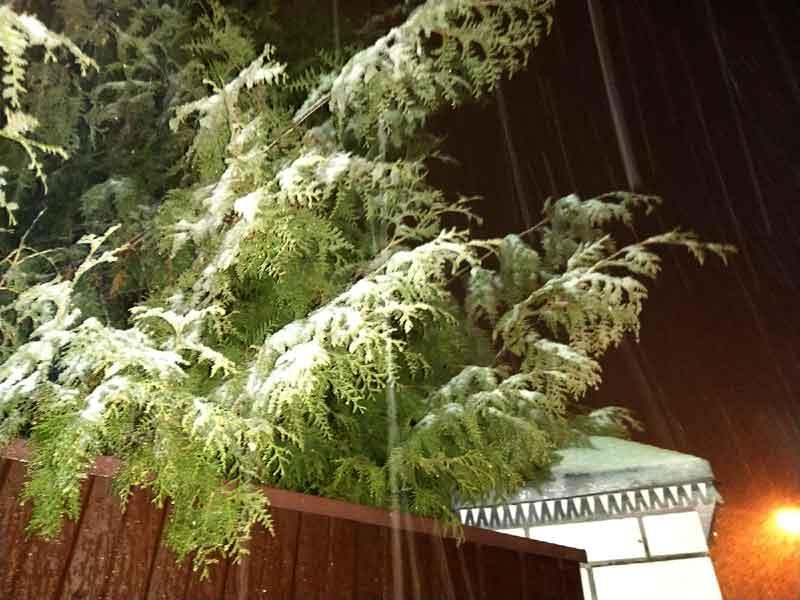 На Брянщину обрушился снегопад в середине весны