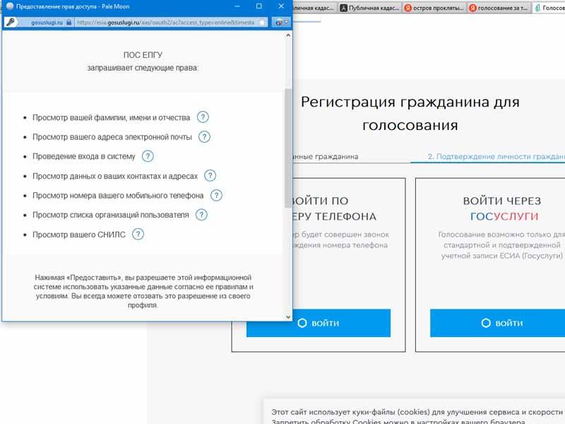 Электронное голосование за благоустройство Брянска, видимо, подсчитывают вручную