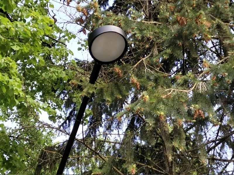 В брянском сквере энергетиков появились новые «виселицы»