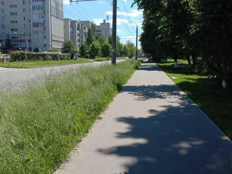 По Брянску с гордостью пройдём – трава по пояс