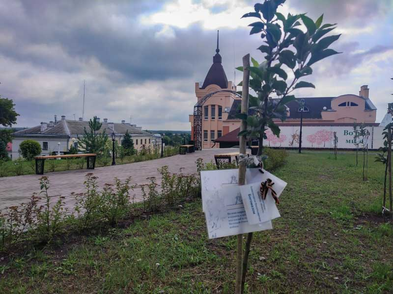 «Скверные истории Брянска» часть VII. Дохнут-сохнут депутаты